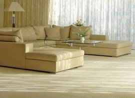 dry-fusion-carpet-cleaning-isle-of-man